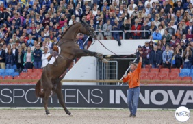 Don VHP Z European Championship Pricegiving