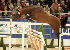 L'Esprit Free Jump